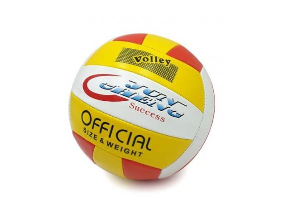 Мяч волейбольный 161-14